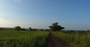 Aussicht von Ococia aufs Umland