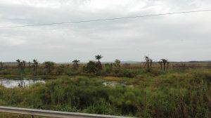 Weg von Uganda nach Ruanda